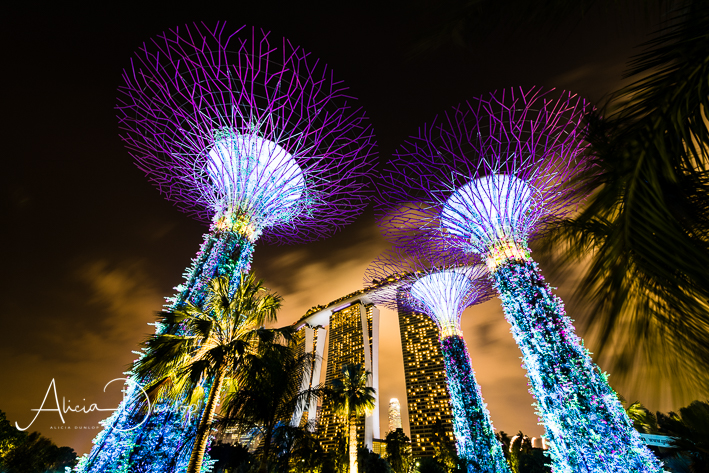 Singapore Places to See - Marina Bay Sands from Gardens by the Bay Singapore