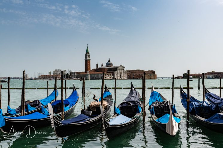 Waiting patiently - a group of gondolas bob quietly on the Grand Canal in Venice.