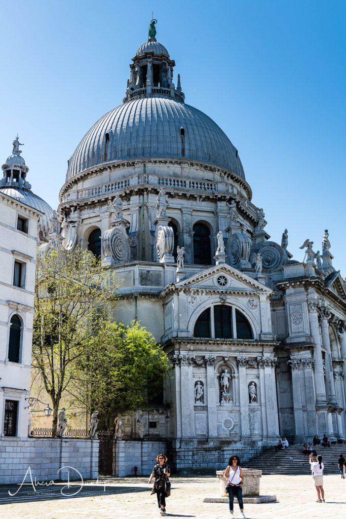 Santa Maria della Salute - Venice in Spring series