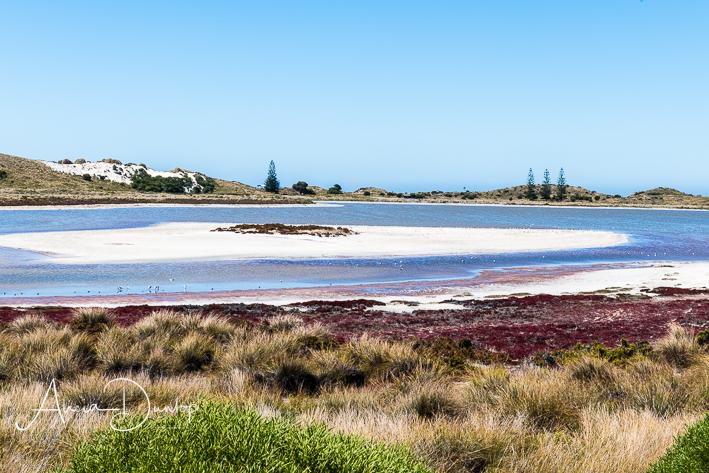 A salt lake - Rottnest Island Western Australia