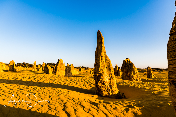 Shaped by Nature - limestone pinnacle in the Pinnacles Desert, Nambung National Park