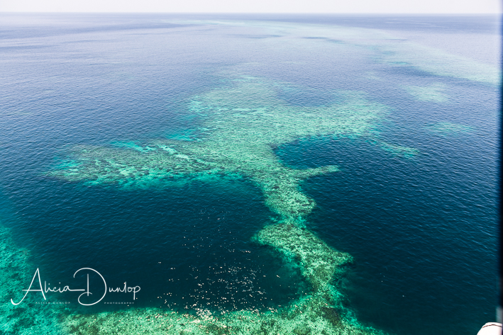 From above it is possible to see the various architecture of the Great Barrier Reef.